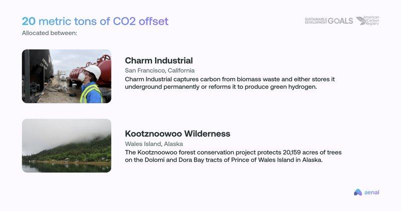 Carbon offset allocation