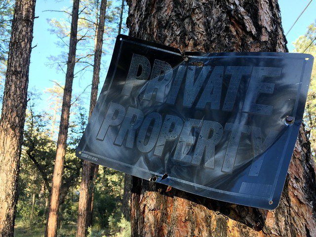 "A header image of a metal sign mounted on a tree in a forest reading, ""private property."""
